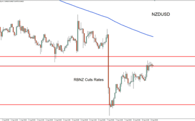 Kiwi Dollar Recovering from Rate Cuts.