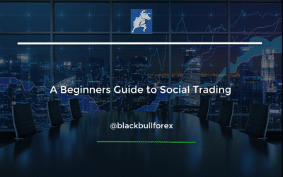 A Beginner's Guide to Social Trading