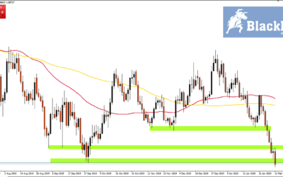 EUR/USD's Continued Fall Linked to Opportunistic Rise in Carry Trading